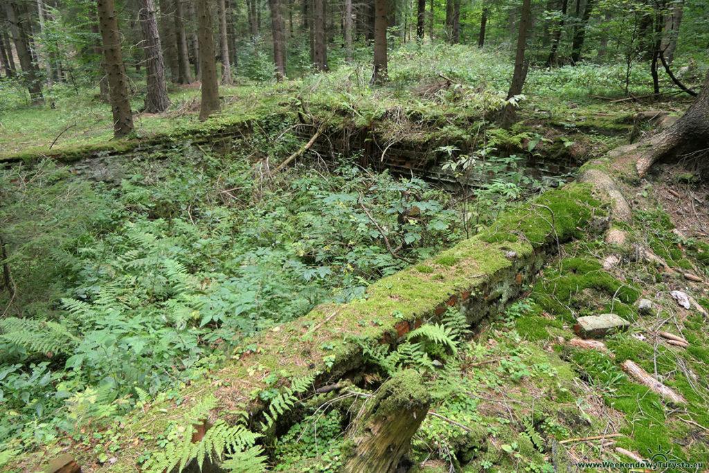 Osówka - pozostałości po obozie