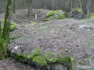 Międzyrzecki Rejon Umocniony - Grupa Warowna Schill