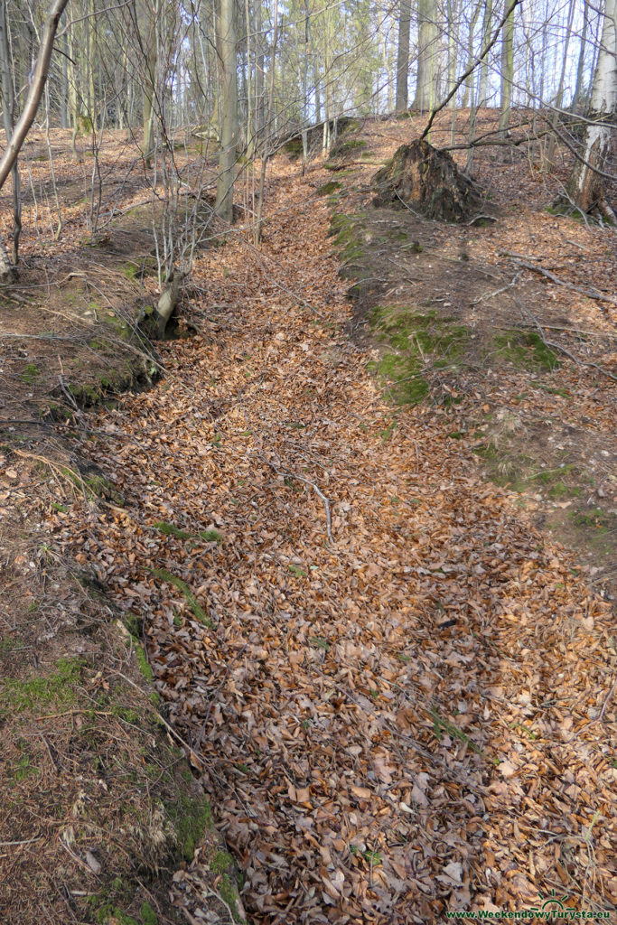 Sztolnie w Leśnej - na szczycie wzniesienia