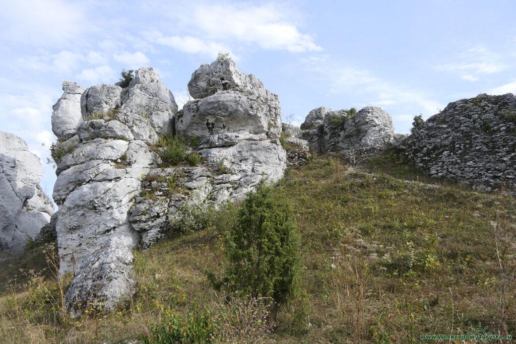 Góry Towarne na Jurze Krakowsko - Częstochowskiej